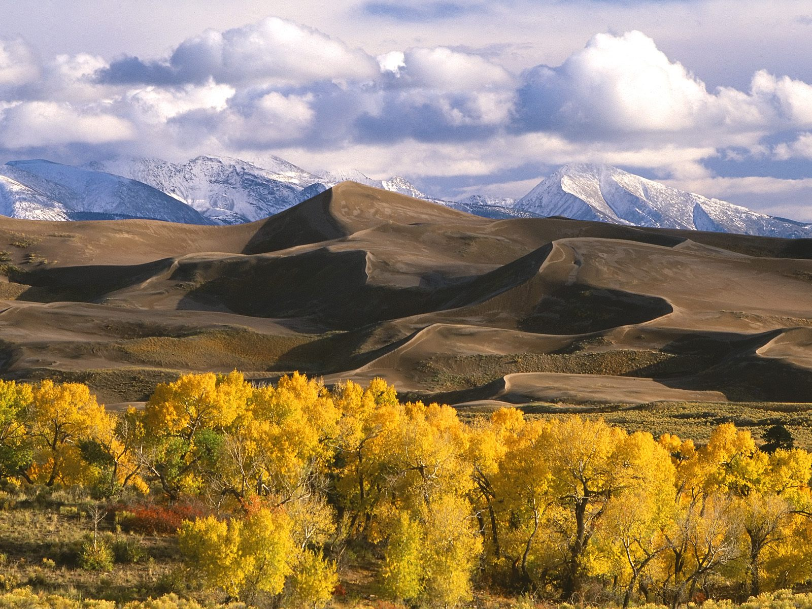 Dunes and Fall Color Colorado 1600 x 1200