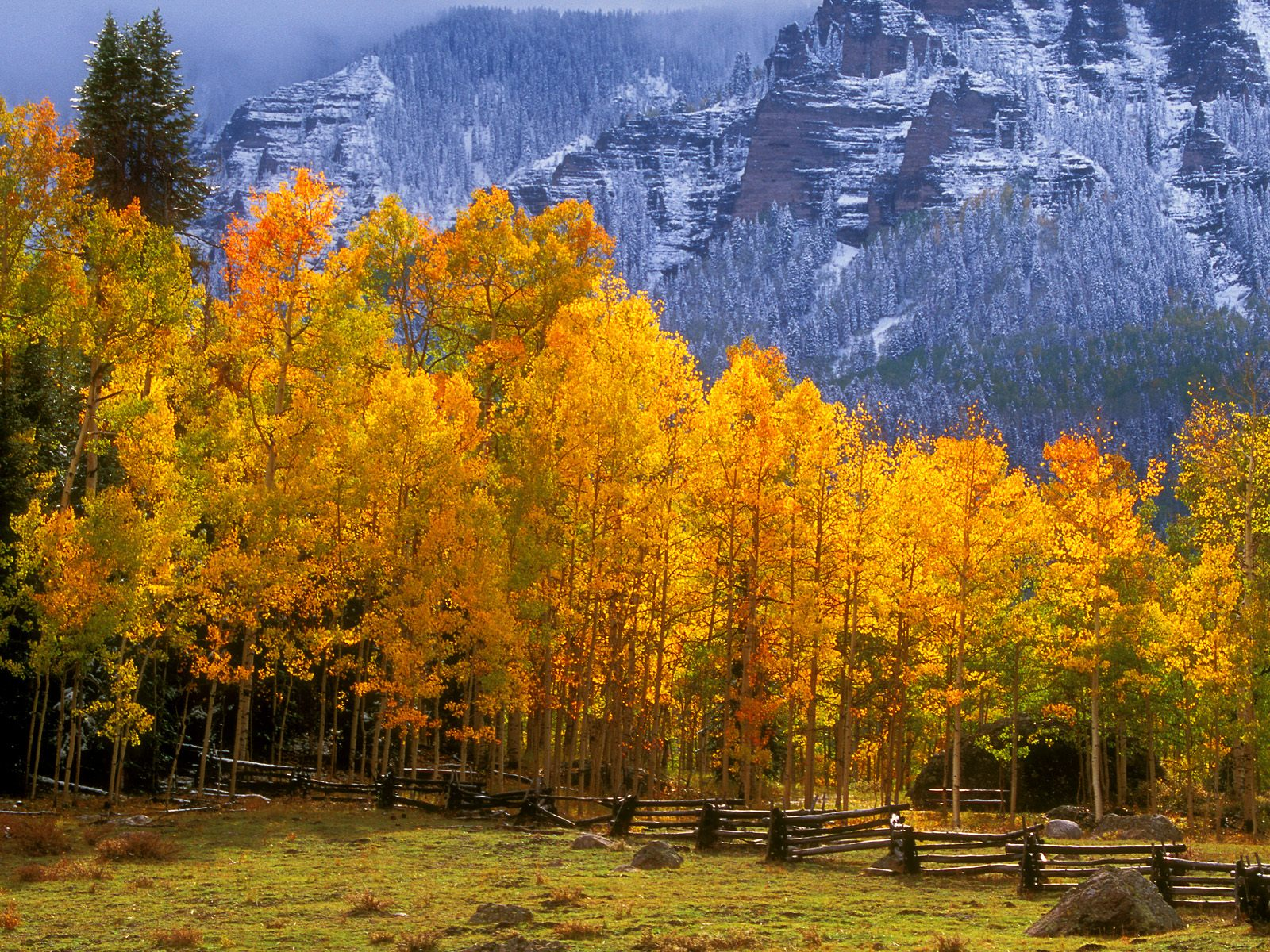 Fall in the High Country Colorado 1600 x 1200