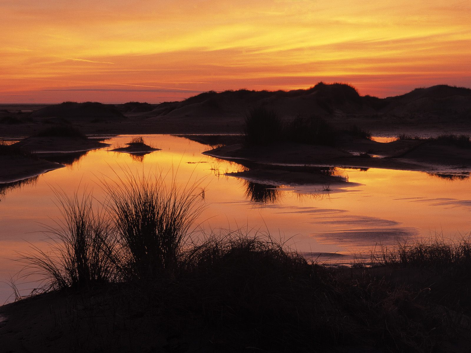 Wetland and Sand Dunes at Sunset Wadden Islands Holland The Netherlands