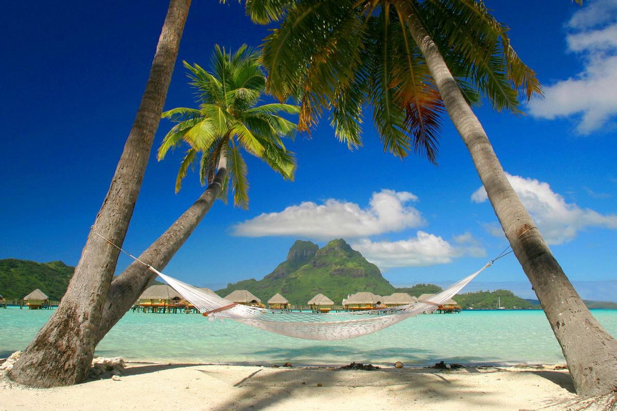 Caribbean Beach Picture Photo