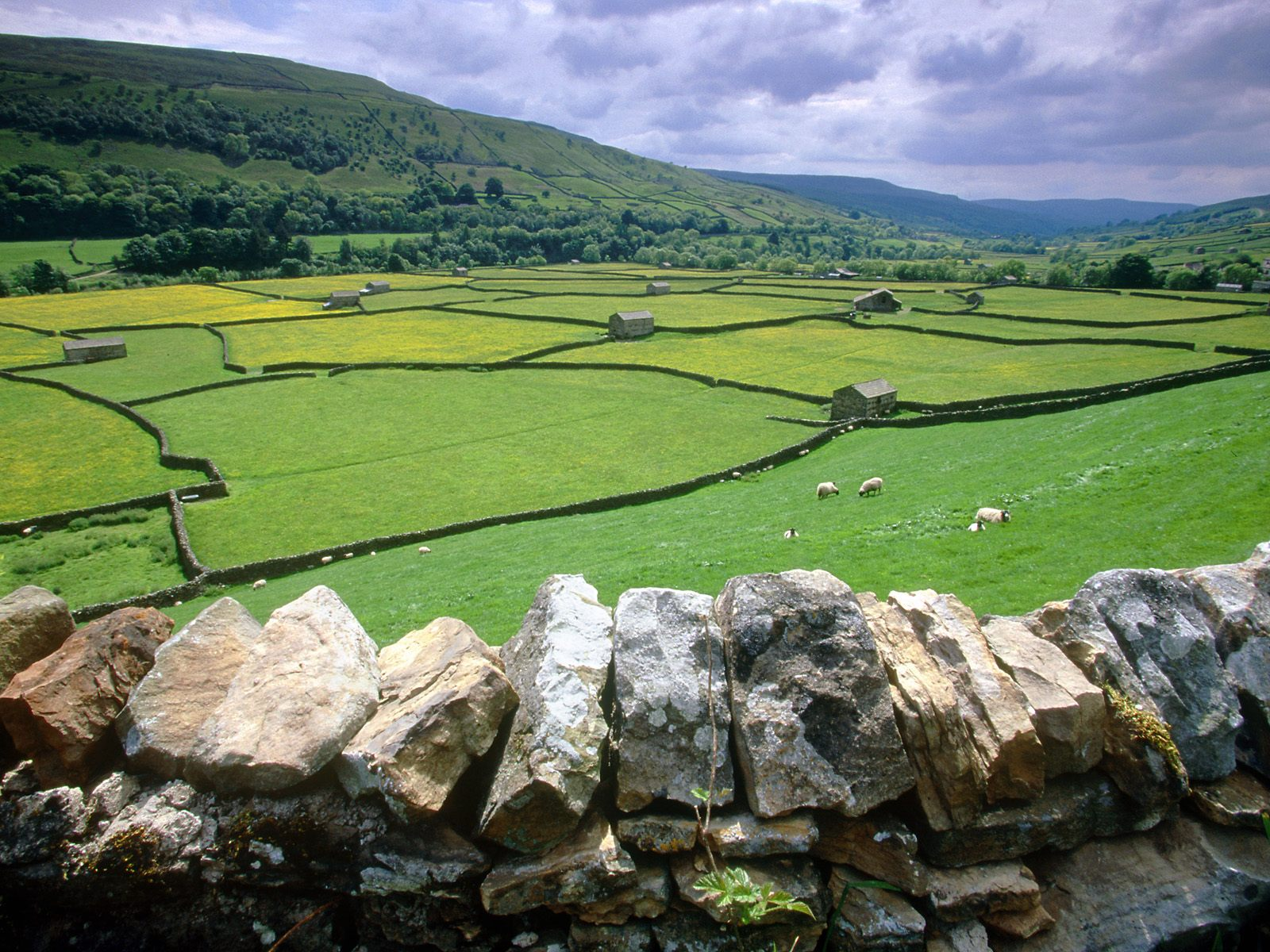 Muker Swaledale Valley Yorkshire