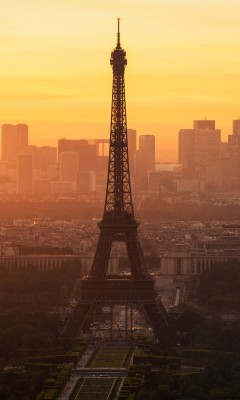 Paris morning 240x400