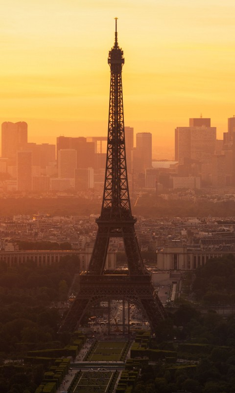 Paris morning 480x800