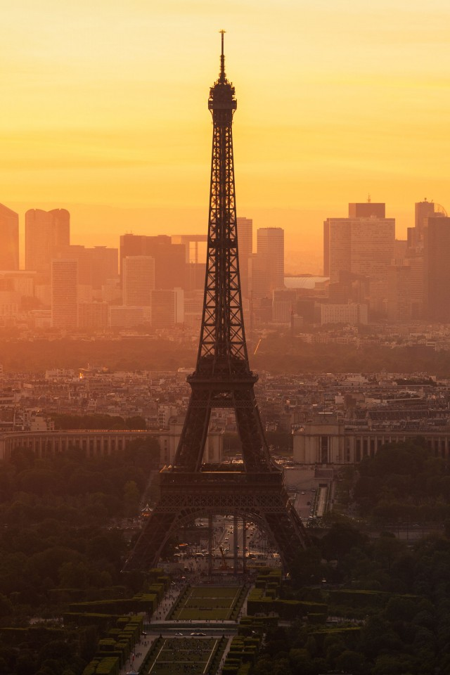 Paris morning 640x960