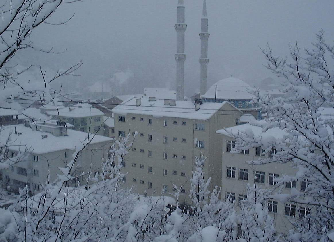 bartin winter 1163 x 843