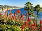Laguna Beach California 1600 x 1200