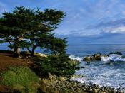 Pacific Grove California 1600 x 1200
