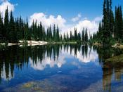 Balsam Lake Mount Revelstoke National Park British Columbia