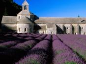 Lavender Field Abbey of Senanque Near Gordes Provence 1600 x 1200