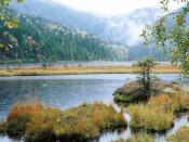 Small Arber Lake Bavarian Forest 1600 x 1200
